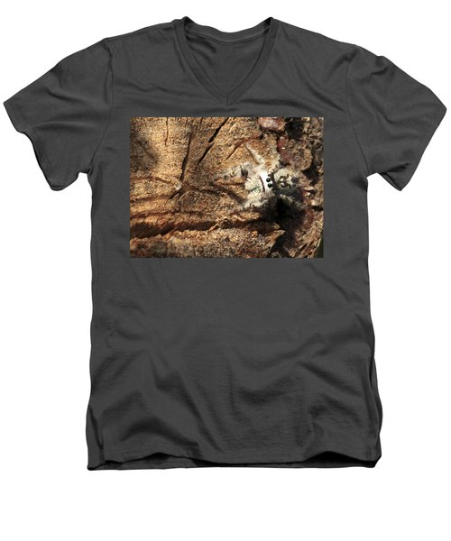 Canopy Jumping Spider Men's V-Neck T-Shirt
