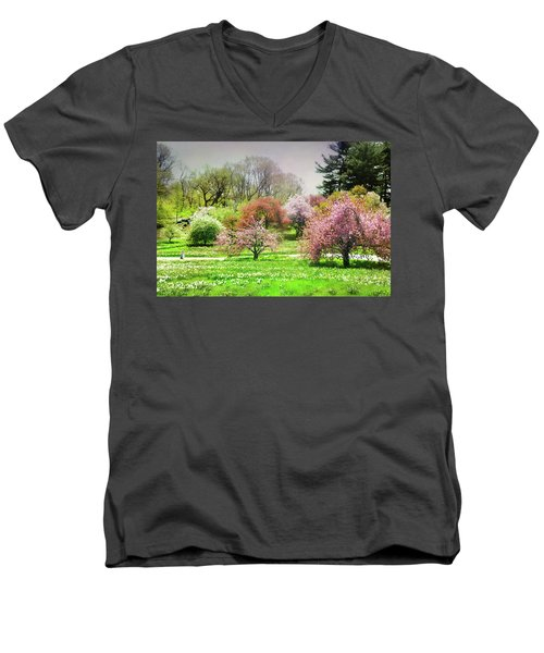 Men's V-Neck T-Shirt featuring the photograph Garden Canvas  by Diana Angstadt