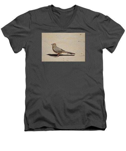 Canyon Towhee Begs Men's V-Neck T-Shirt