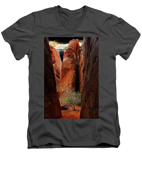 Men's V-Neck T-Shirt featuring the photograph Canyon Tree by Harry Spitz