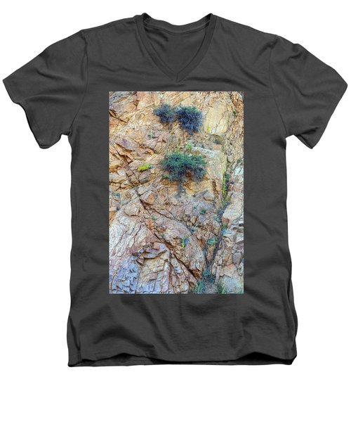 Men's V-Neck T-Shirt featuring the photograph Canyon Vegetation by James BO Insogna