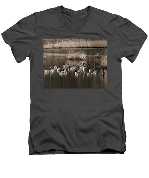 Cape Cod Americana Canada Geese Men's V-Neck T-Shirt by Constantine Gregory