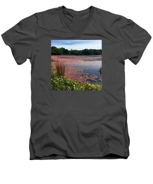 Cape Cod Cranberry Bog Men's V-Neck T-Shirt by Beth Saffer