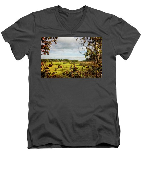 Cape Cod Marsh 3 Men's V-Neck T-Shirt