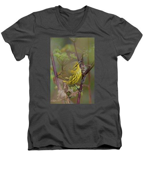 Cape May Warbler In Wees Men's V-Neck T-Shirt by Alan Lenk