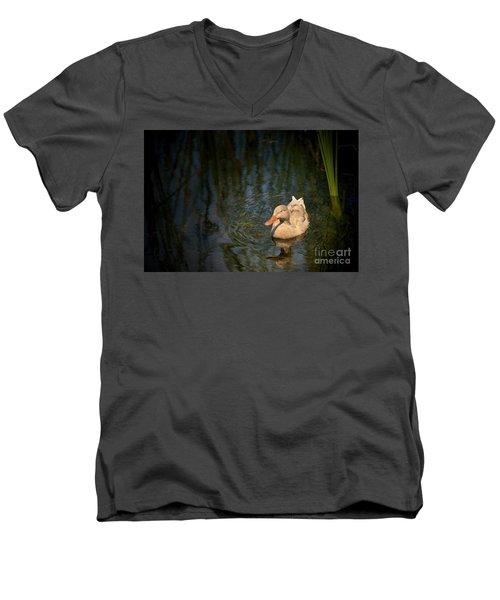 Caramel Mallard Men's V-Neck T-Shirt by Pamela Blizzard