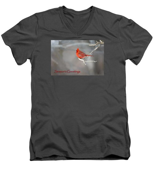 Men's V-Neck T-Shirt featuring the photograph Cardinal Christmas Card by Gary Hall