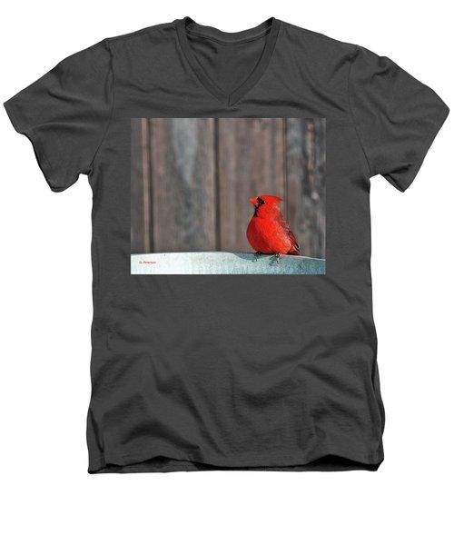 Cardinal Drinking Men's V-Neck T-Shirt