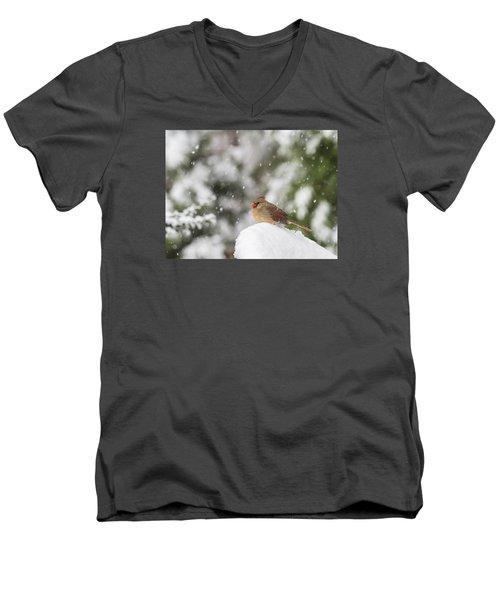 Cardinal In The Snow Men's V-Neck T-Shirt