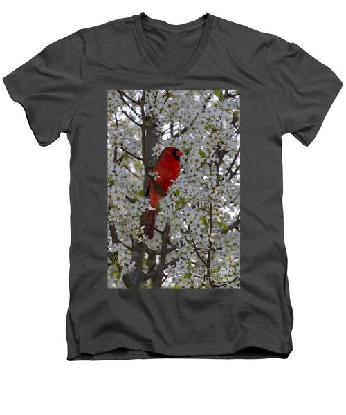 Cardinal In White Blossoms Men's V-Neck T-Shirt by Barbara Bowen