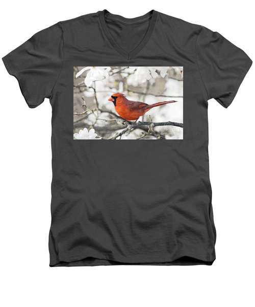 Men's V-Neck T-Shirt featuring the photograph Cardinal Spring - D009909-a by Daniel Dempster