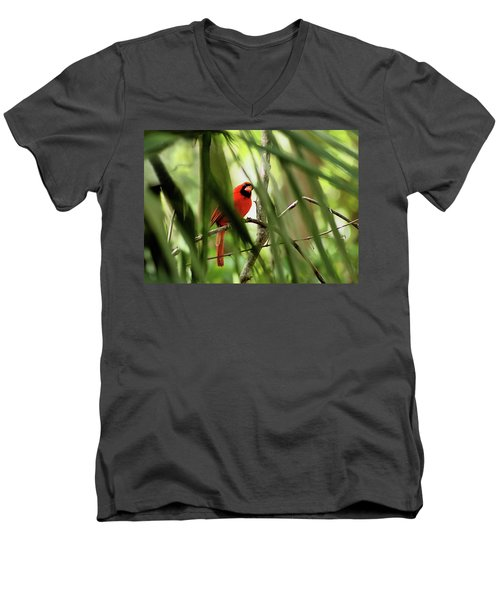 Cardinal Spy Men's V-Neck T-Shirt