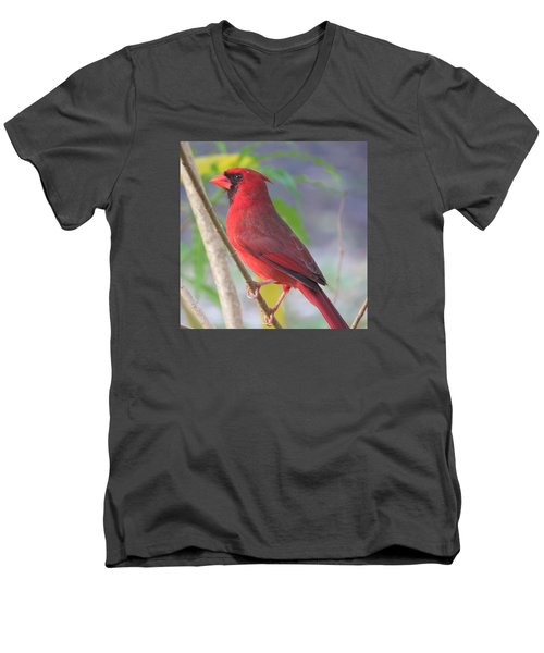 Cardinal Men's V-Neck T-Shirt
