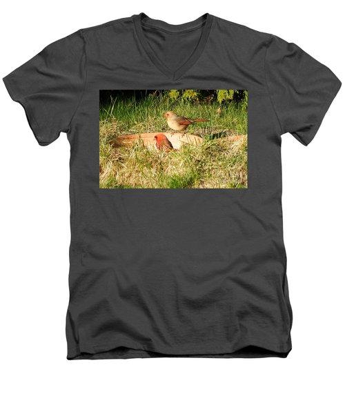 Cardinals Men's V-Neck T-Shirt by Vicky Tarcau
