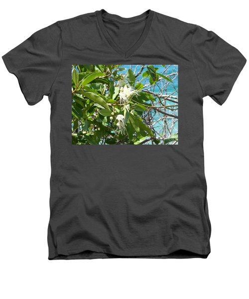 Caribbean Honeysuckle Men's V-Neck T-Shirt