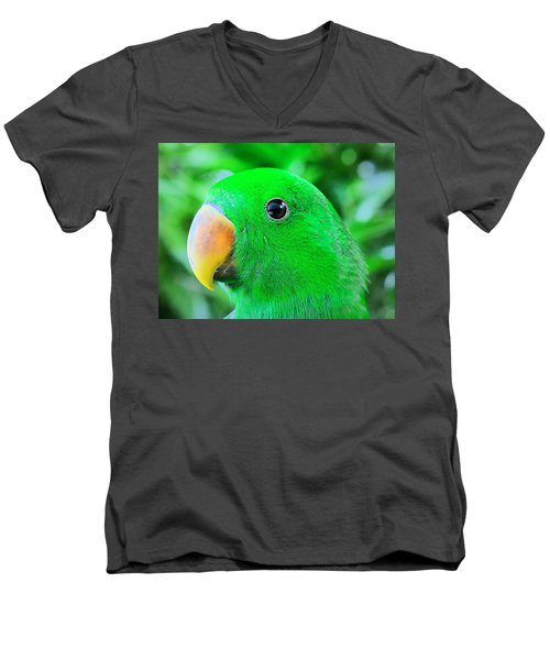 Carlos Avila Men's V-Neck T-Shirt