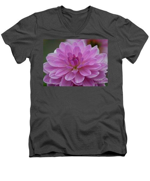 Carmen Bunky 3 Men's V-Neck T-Shirt