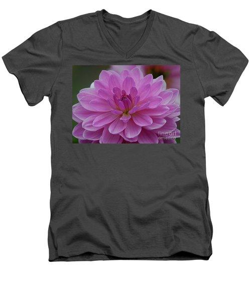 Carmen Bunky 2 Men's V-Neck T-Shirt