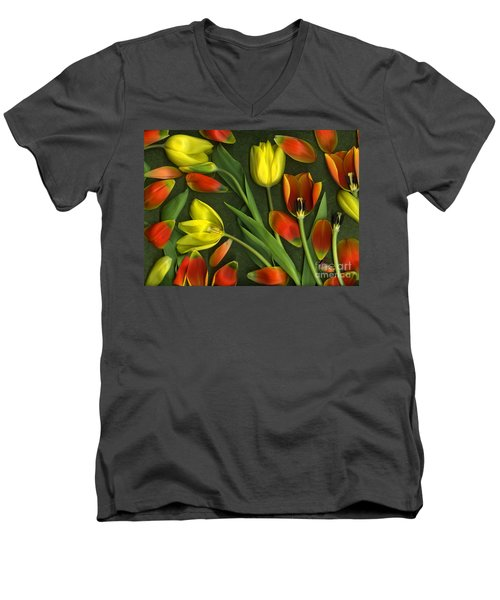 Carnival  Men's V-Neck T-Shirt by Christian Slanec