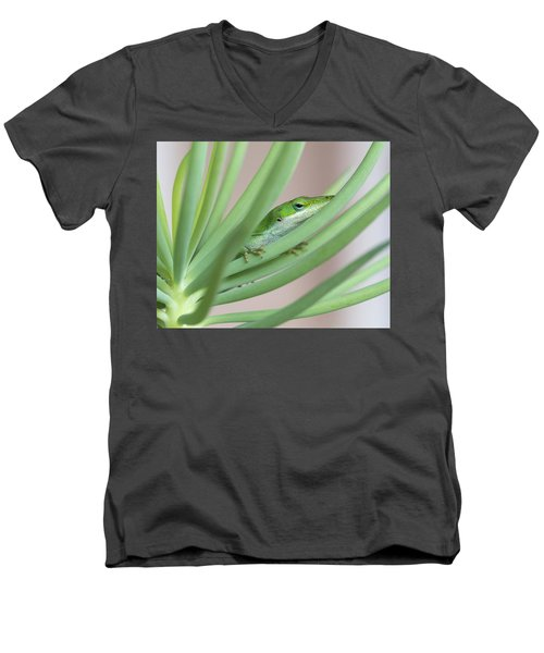 Carolina Anole Men's V-Neck T-Shirt