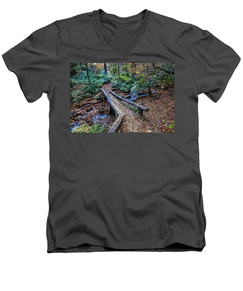 Carpet Of Leaves Men's V-Neck T-Shirt by Dale R Carlson