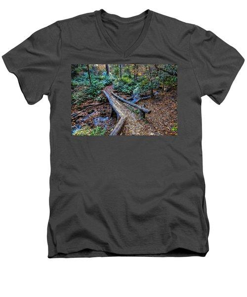 Carpet Of Leaves Men's V-Neck T-Shirt