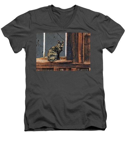 Cat In A Window Men's V-Neck T-Shirt by Scott Warner