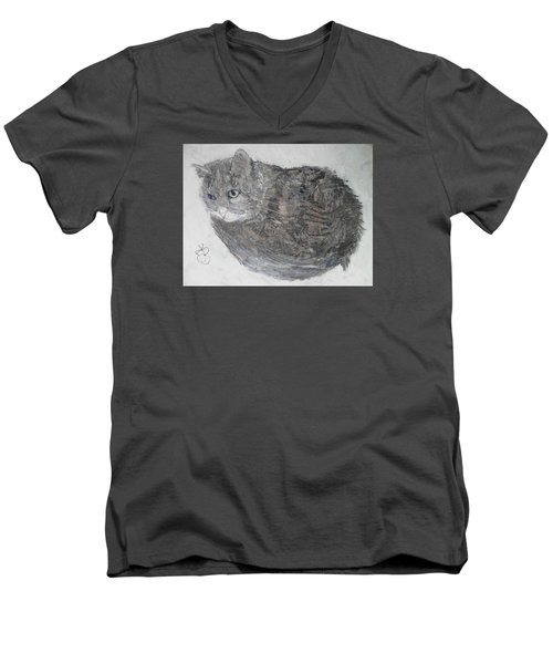 Cat Named Shrimp Men's V-Neck T-Shirt by AJ Brown