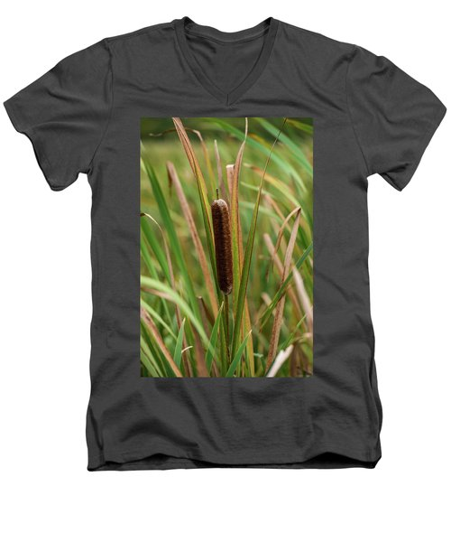Men's V-Neck T-Shirt featuring the photograph Cat Tail by Paul Freidlund