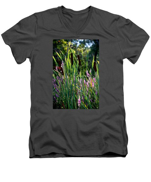 Cat Tails In The Morning Men's V-Neck T-Shirt