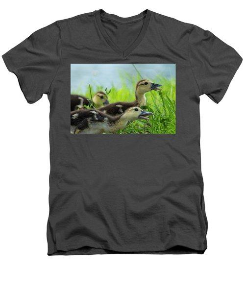 Catching Bugs Men's V-Neck T-Shirt