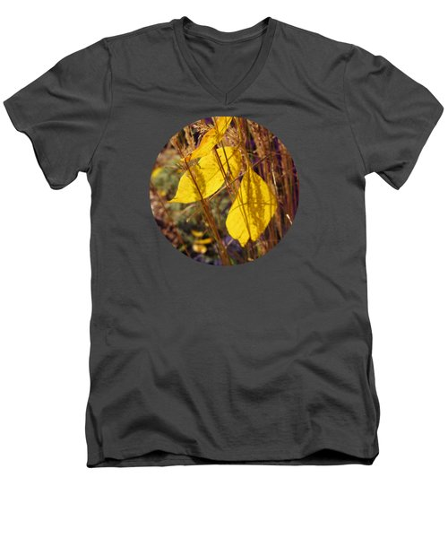 Catching Some Gold Men's V-Neck T-Shirt