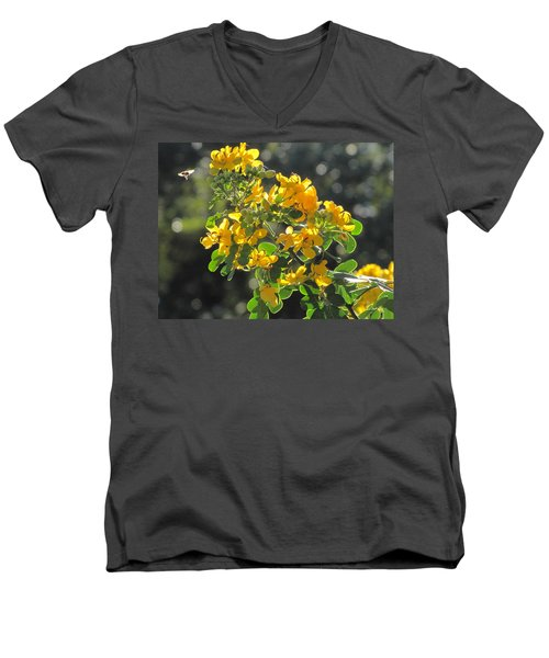 Catchlight Bee Over Yellow Blooms Men's V-Neck T-Shirt