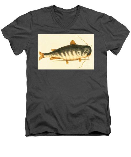Catfish Men's V-Neck T-Shirt by Mark Catesby