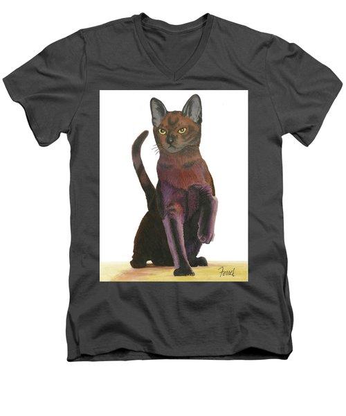 Cats Meow Men's V-Neck T-Shirt by Ferrel Cordle