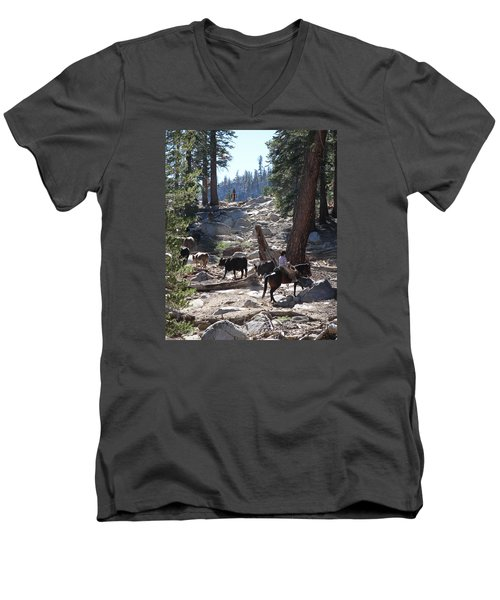 Cattle Climbing Men's V-Neck T-Shirt