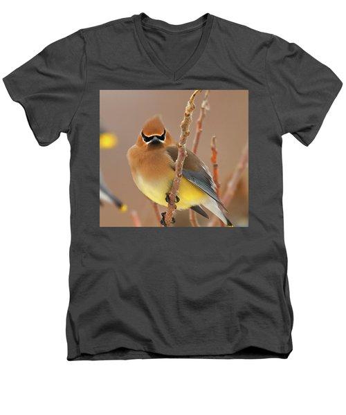 Cedar Wax Wing Men's V-Neck T-Shirt by Carl Shaw