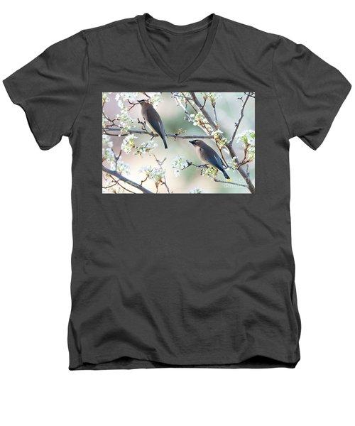 Cedar Wax Wing Pair Men's V-Neck T-Shirt by Jim Fillpot