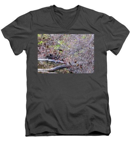 Men's V-Neck T-Shirt featuring the photograph Cedar Waxwings Feeding 2 by Edward Peterson