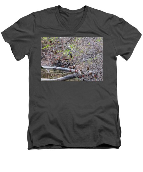 Men's V-Neck T-Shirt featuring the photograph Cedar Waxwings Feeding by Edward Peterson