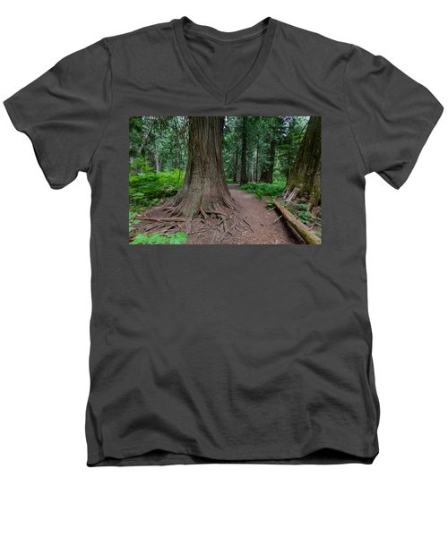 Men's V-Neck T-Shirt featuring the photograph Path Of Cedars by Fran Riley