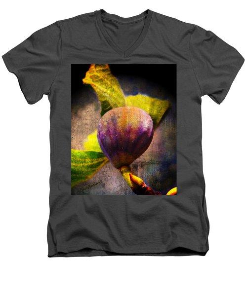 Celeste Fig Men's V-Neck T-Shirt