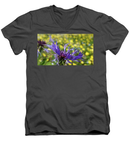 Centaurea Montana Flower Men's V-Neck T-Shirt