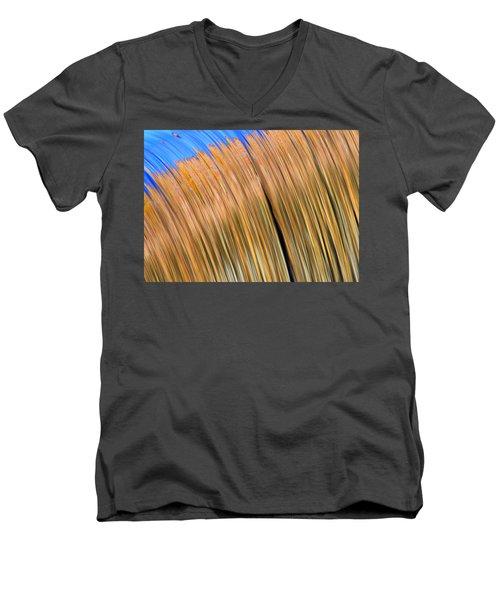 Changing Colors Men's V-Neck T-Shirt