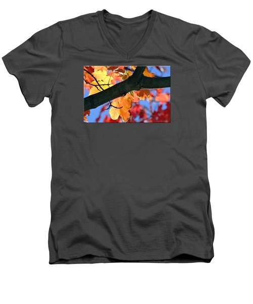 Changing Of The Colors Men's V-Neck T-Shirt by Mikki Cucuzzo