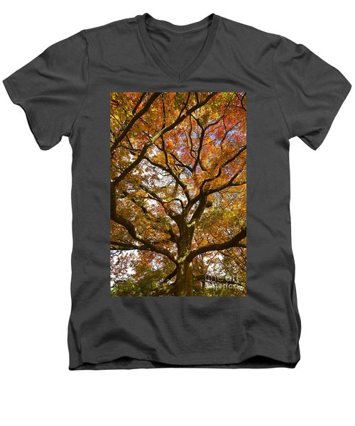 Changing Of The Oak Men's V-Neck T-Shirt