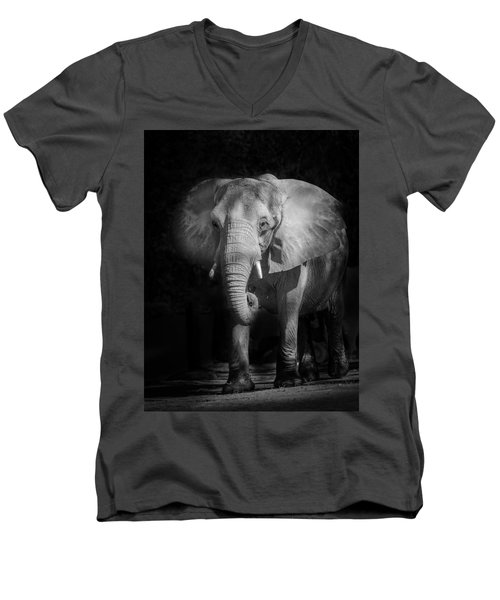 Charging Elephant Men's V-Neck T-Shirt