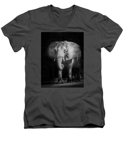 Charging Elephant Men's V-Neck T-Shirt