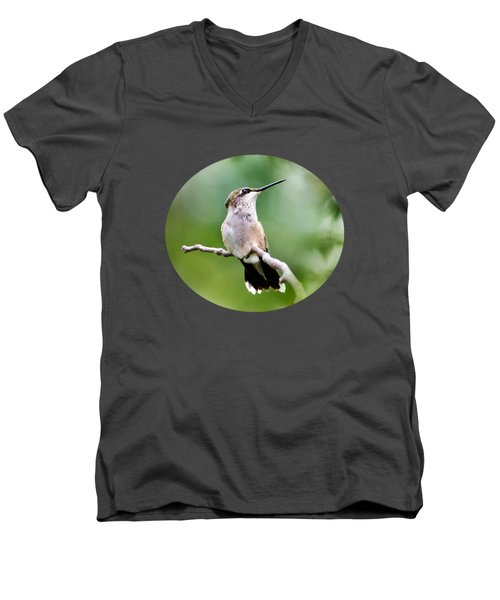 Charming Hummingbird Men's V-Neck T-Shirt
