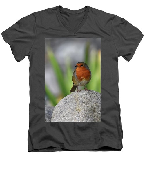 Cheeky Chappy Men's V-Neck T-Shirt